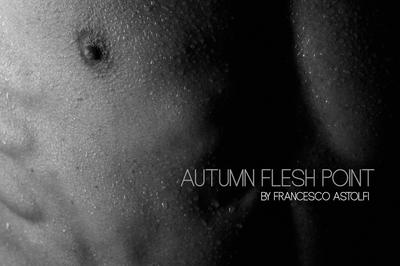 Book AUTUMN FLESH POINT