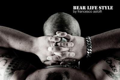 Book Bear Life Style